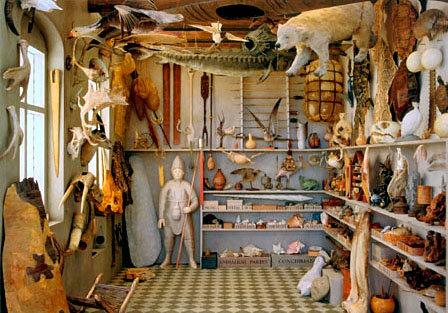 オーレ・ワームのこと ロザモンド・パーセルによるMuseum Wormianumの再現作品